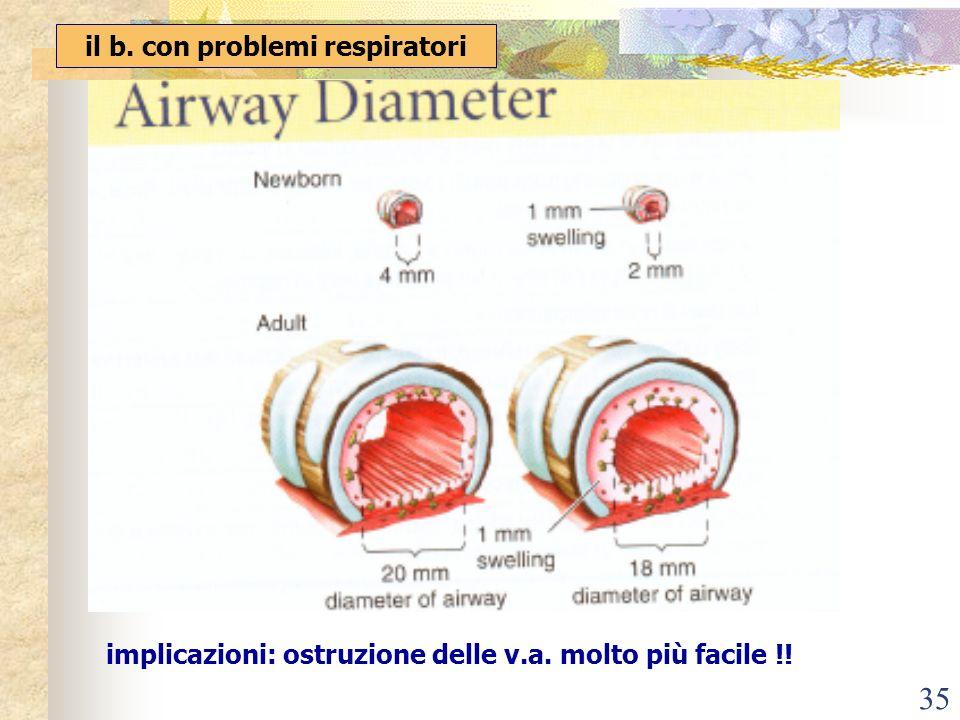 35 il b. con problemi respiratori implicazioni: ostruzione delle v.a. molto più facile !!