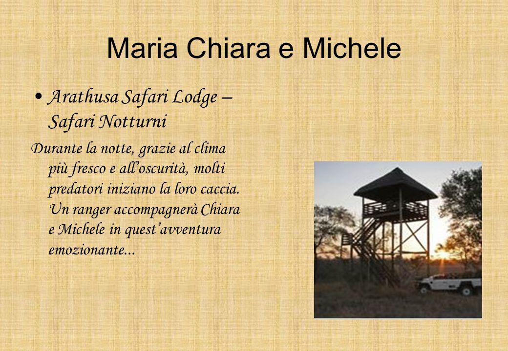 Maria Chiara e Michele Arathusa Safari Lodge – Safari Notturni Durante la notte, grazie al clima più fresco e alloscurità, molti predatori iniziano la