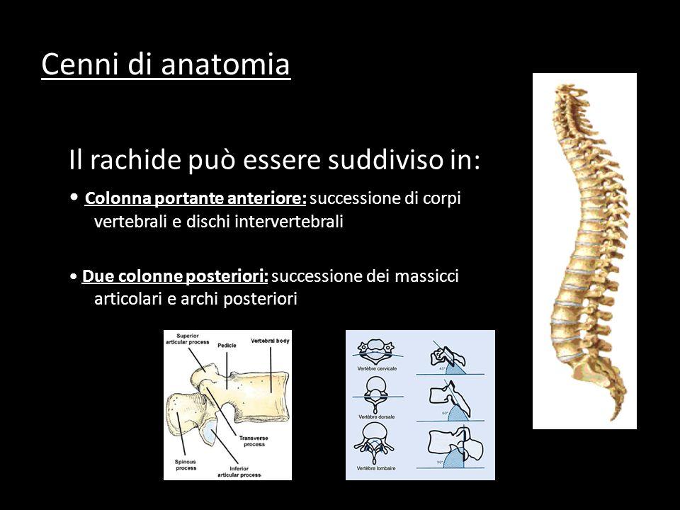 Il rachide può essere suddiviso in: Colonna portante anteriore: successione di corpi vertebrali e dischi intervertebrali Due colonne posteriori: successione dei massicci articolari e archi posteriori Cenni di anatomia
