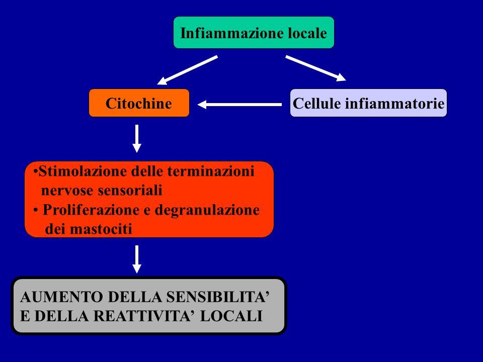 Infiammazione locale CitochineCellule infiammatorie Stimolazione delle terminazioni nervose sensoriali Proliferazione e degranulazione dei mastociti A