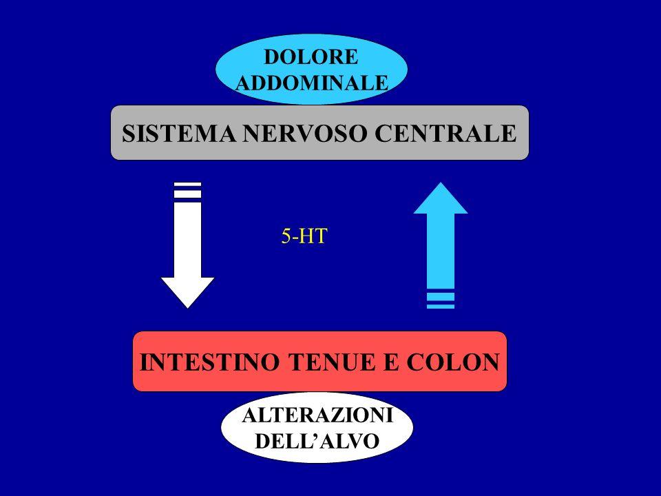 SISTEMA NERVOSO CENTRALE INTESTINO TENUE E COLON DOLORE ADDOMINALE ALTERAZIONI DELLALVO 5-HT