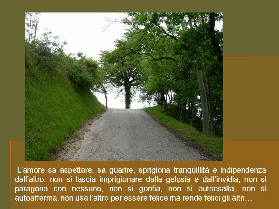 arcofloridapps Elaborazione a cura delle Monache Benedettine S.