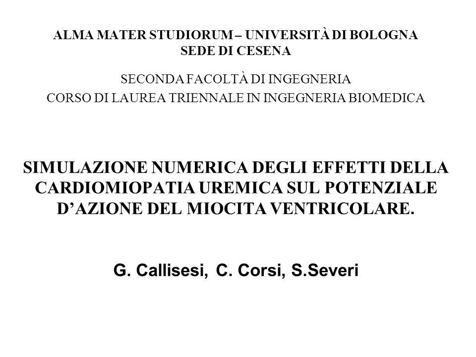 I CaL CORRENTE DI CALCIO L-TYPE