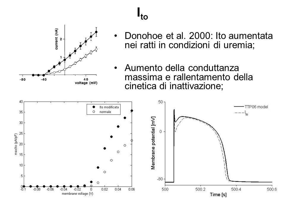 I to Donohoe et al. 2000: Ito aumentata nei ratti in condizioni di uremia; Aumento della conduttanza massima e rallentamento della cinetica di inattiv
