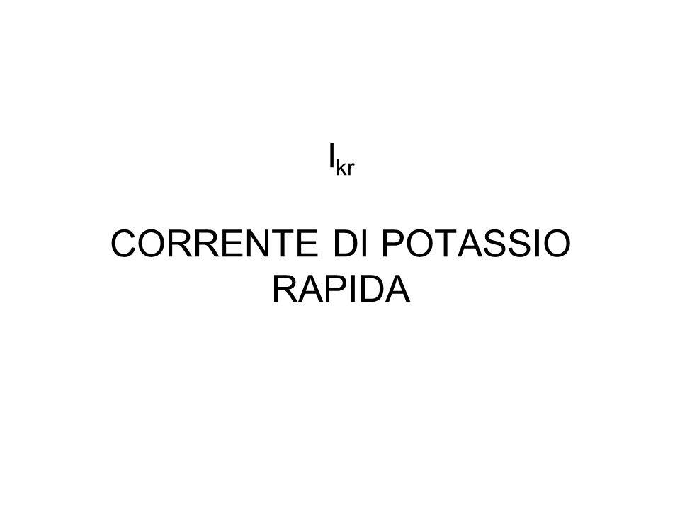 I kr CORRENTE DI POTASSIO RAPIDA