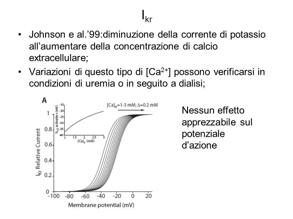 I kr Johnson e al.99:diminuzione della corrente di potassio allaumentare della concentrazione di calcio extracellulare; Variazioni di questo tipo di [