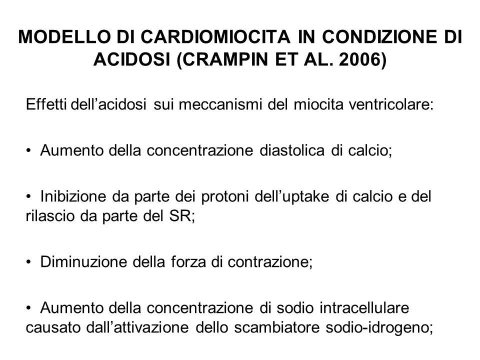 MODELLO DI CARDIOMIOCITA IN CONDIZIONE DI ACIDOSI (CRAMPIN ET AL. 2006) Effetti dellacidosi sui meccanismi del miocita ventricolare: Aumento della con