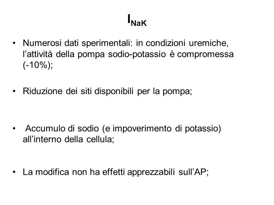 I NaK Numerosi dati sperimentali: in condizioni uremiche, lattività della pompa sodio-potassio è compromessa (-10%); Riduzione dei siti disponibili pe