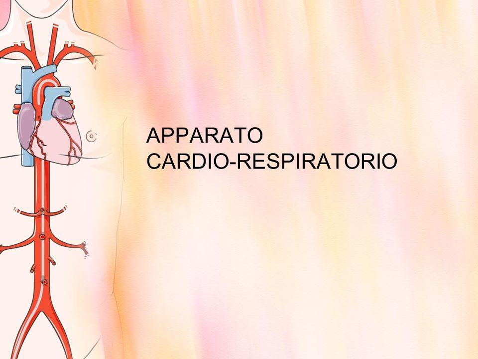 APPARATO CARDIO-RESPIRATORIO