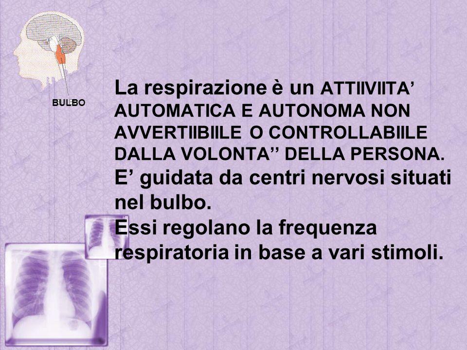 La respirazione è un ATTIIVIITA AUTOMATICA E AUTONOMA NON AVVERTIIBIILE O CONTROLLABIILE DALLA VOLONTA DELLA PERSONA. E guidata da centri nervosi situ