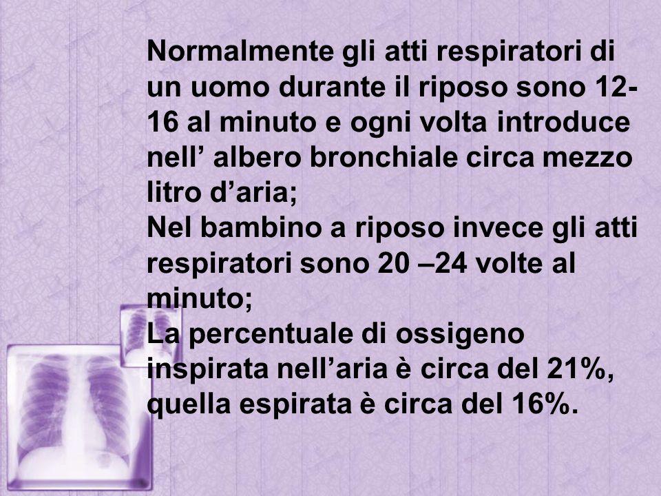 Normalmente gli atti respiratori di un uomo durante il riposo sono 12- 16 al minuto e ogni volta introduce nell albero bronchiale circa mezzo litro da