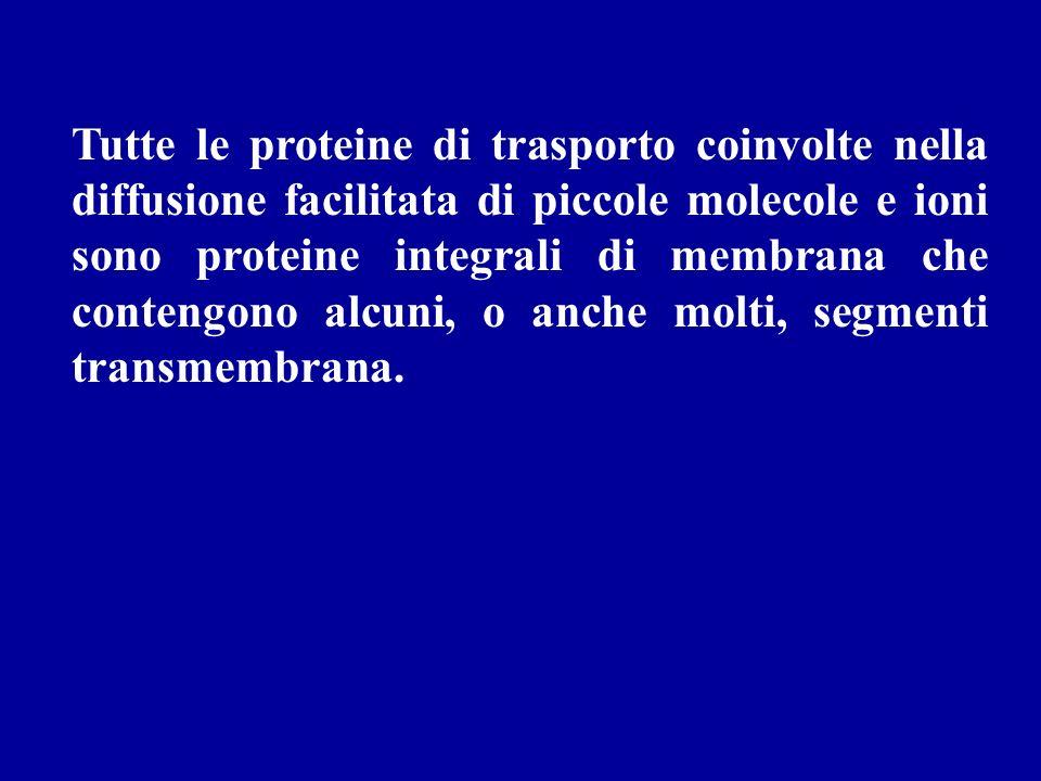 Tutte le proteine di trasporto coinvolte nella diffusione facilitata di piccole molecole e ioni sono proteine integrali di membrana che contengono alc