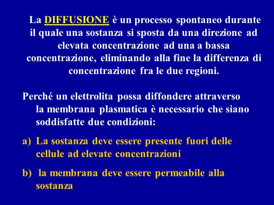 La DIFFUSIONE è un processo spontaneo durante il quale una sostanza si sposta da una direzione ad elevata concentrazione ad una a bassa concentrazione