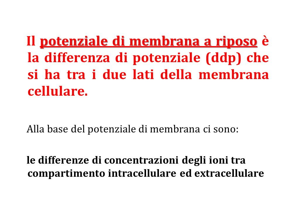 potenziale di membrana a riposo Il potenziale di membrana a riposo è la differenza di potenziale (ddp) che si ha tra i due lati della membrana cellula