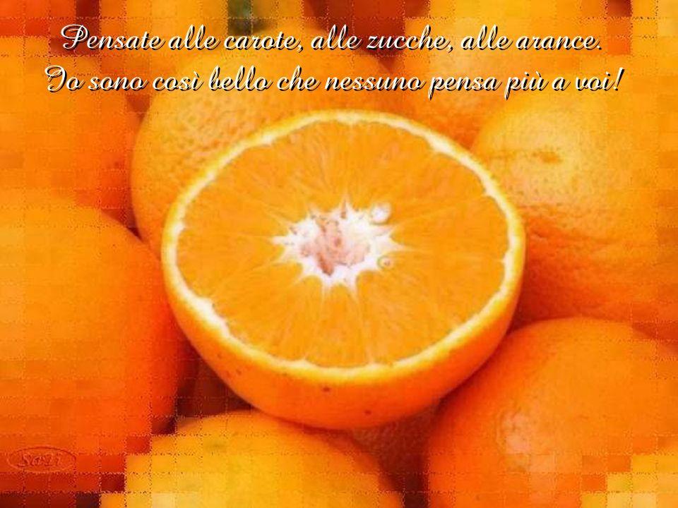 Larancione si fece largo: Io sono il colore della salute e della forza, sono prezioso perché porto con me le più importanti vitamine.