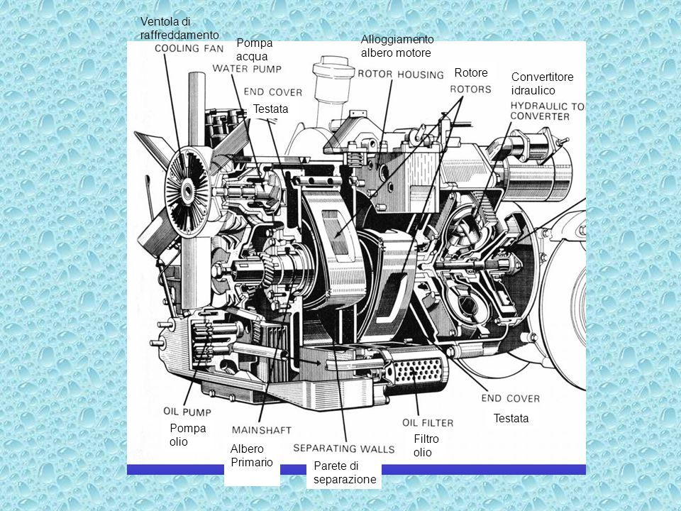 Ventola di raffreddamento Parete di separazione Albero Primario Convertitore idraulico Testata Pompa acqua Alloggiamento albero motore Pompa olio Filt