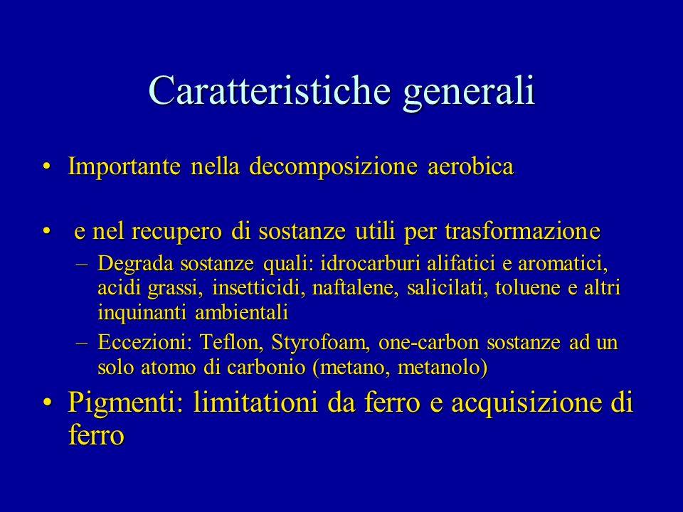 Caratteristiche generali Importante nella decomposizione aerobicaImportante nella decomposizione aerobica e nel recupero di sostanze utili per trasfor