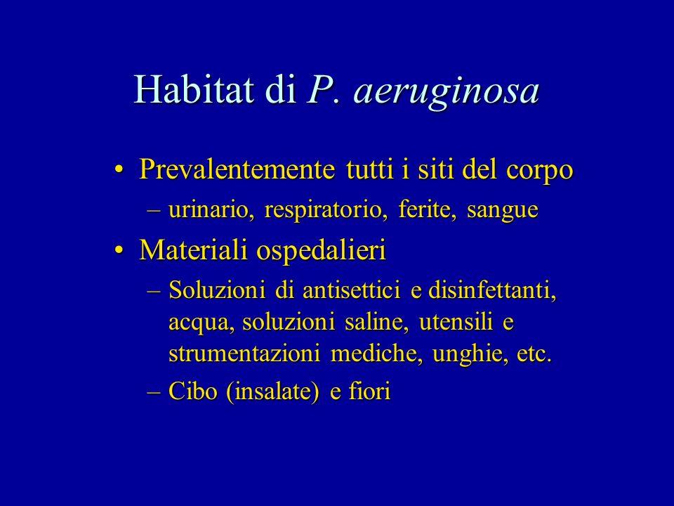 Habitat di P. aeruginosa Prevalentemente tutti i siti del corpoPrevalentemente tutti i siti del corpo –urinario, respiratorio, ferite, sangue Material