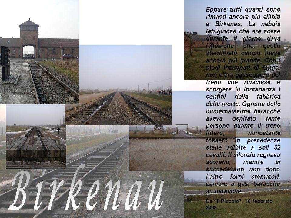 Eppure tutti quanti sono rimasti ancora più allibiti a Birkenau. La nebbia lattiginosa che era scesa durante il giorno dava lillusione che quello ster