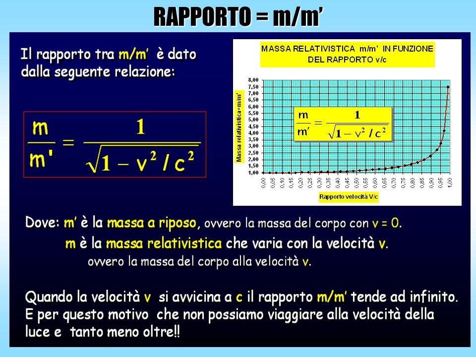RAPPORTO = m/m