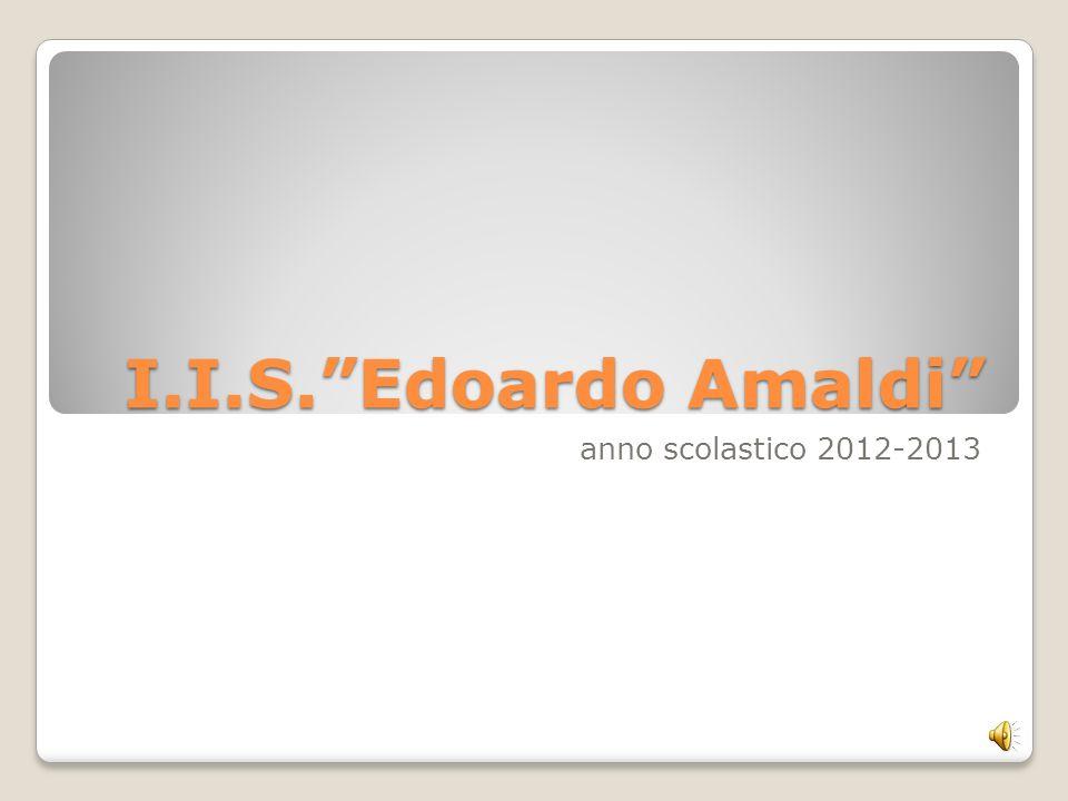 I.I.S.Edoardo Amaldi anno scolastico 2012-2013