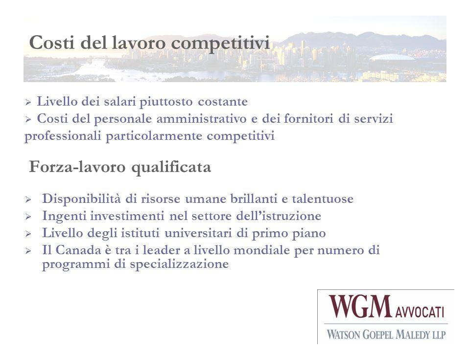 Forza-lavoro qualificata Disponibilità di risorse umane brillanti e talentuose Ingenti investimenti nel settore dellistruzione Livello degli istituti