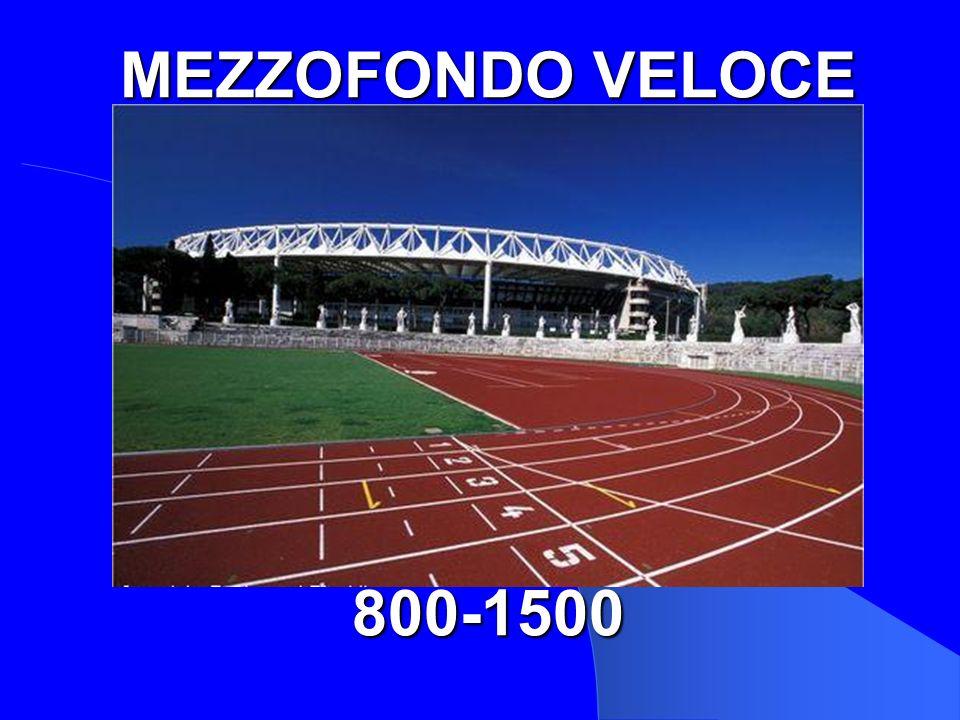 MEZZOFONDO VELOCE 800-1500 800/1500