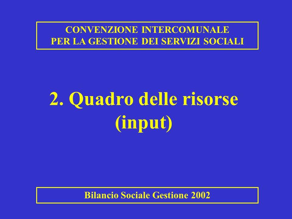 2. Quadro delle risorse (input) CONVENZIONE INTERCOMUNALE PER LA GESTIONE DEI SERVIZI SOCIALI Bilancio Sociale Gestione 2002