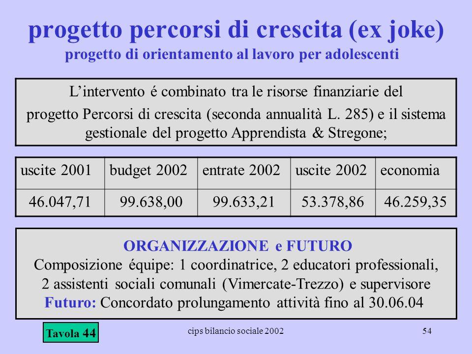 cips bilancio sociale 200254 progetto percorsi di crescita (ex joke) Lintervento é combinato tra le risorse finanziarie del progetto Percorsi di cresc