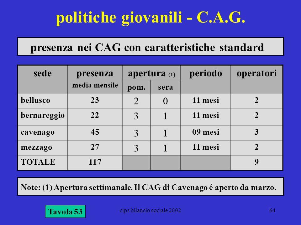 cips bilancio sociale 200264 politiche giovanili - C.A.G. Tavola 53 presenza nei CAG con caratteristiche standard sedepresenza media mensile apertura
