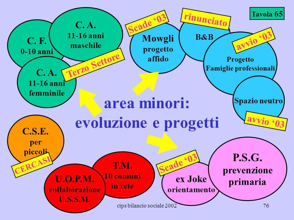 cips bilancio sociale 200276 area minori: evoluzione e progetti Tavola 65 Mowgli progetto affido B&B C. F. 0-10 anni ex Joke orientamento C. A. 11-16