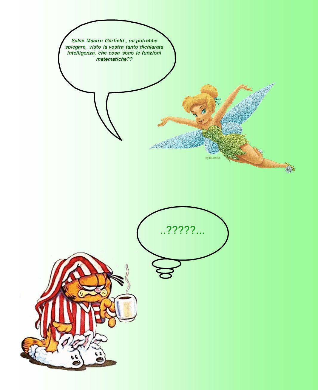 Salve Mastro Garfield, mi potrebbe spiegare, visto la vostra tanto dichiarata intelligenza, che cosa sono le funzioni matematiche??..?????...