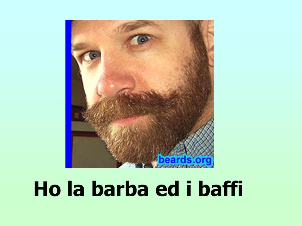 Ho la barba