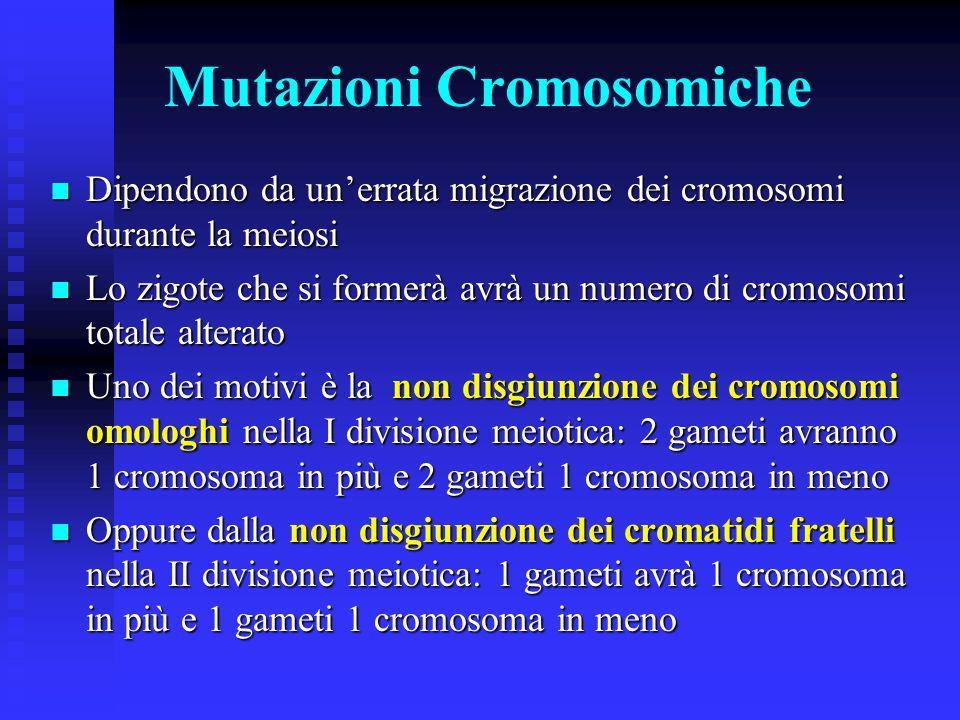 Mutageni In natura le mutazioni sono estremamente rare In natura le mutazioni sono estremamente rare Esistono però agenti di varia natura che possono