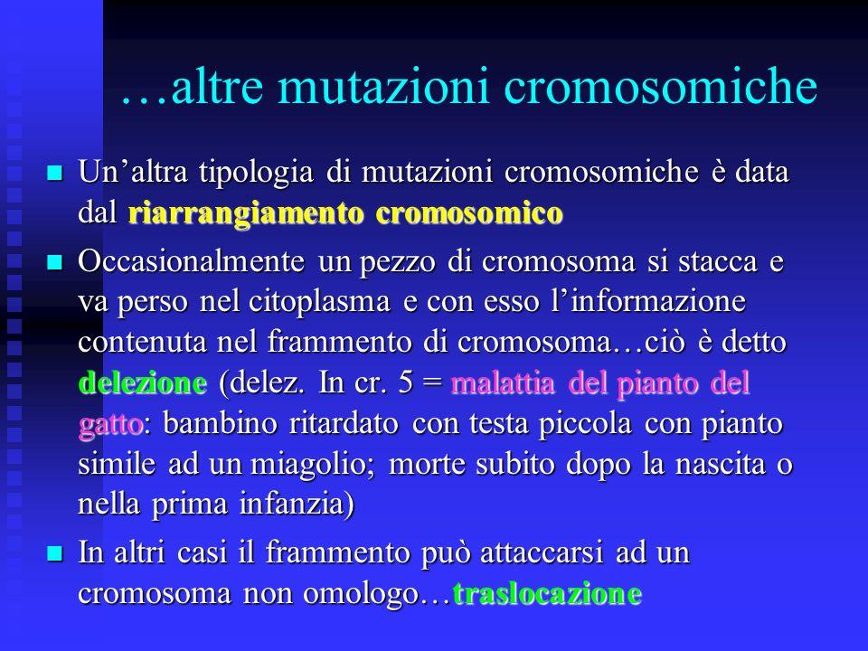 Monosomia e Trisomia Solitamente le monosomie non sono compatibili con la vita perché il nuovo organismo sarà completamente privo dellinformazione con