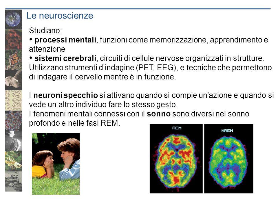 Le neuroscienze Studiano: processi mentali, funzioni come memorizzazione, apprendimento e attenzione sistemi cerebrali, circuiti di cellule nervose or