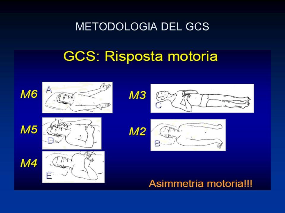 METODOLOGIA DEL GCS