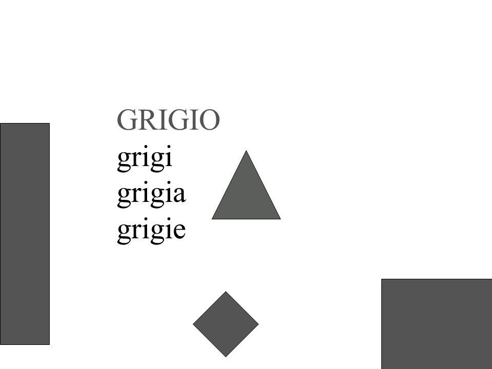 GRIGIO grigi grigia grigie