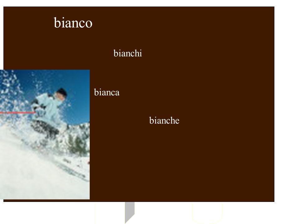 BIANCO bianco bianchi bianca bianche