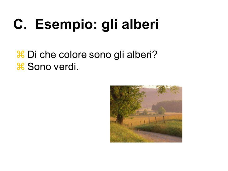 Di che colore sono gli alberi? Sono verdi. C. Esempio: gli alberi