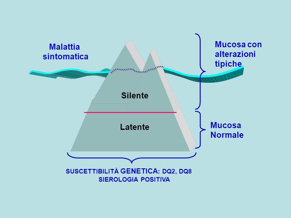 Silente Latente Malattia sintomatica SUSCETTIBILITÀ GENETICA : DQ2, DQ8 SIEROLOGIA POSITIVA Mucosa con alterazioni tipiche Mucosa Normale