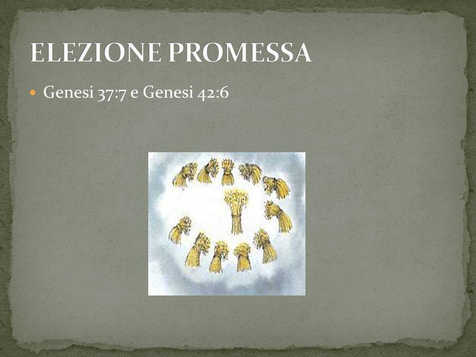 Genesi 37:7 e Genesi 42:6