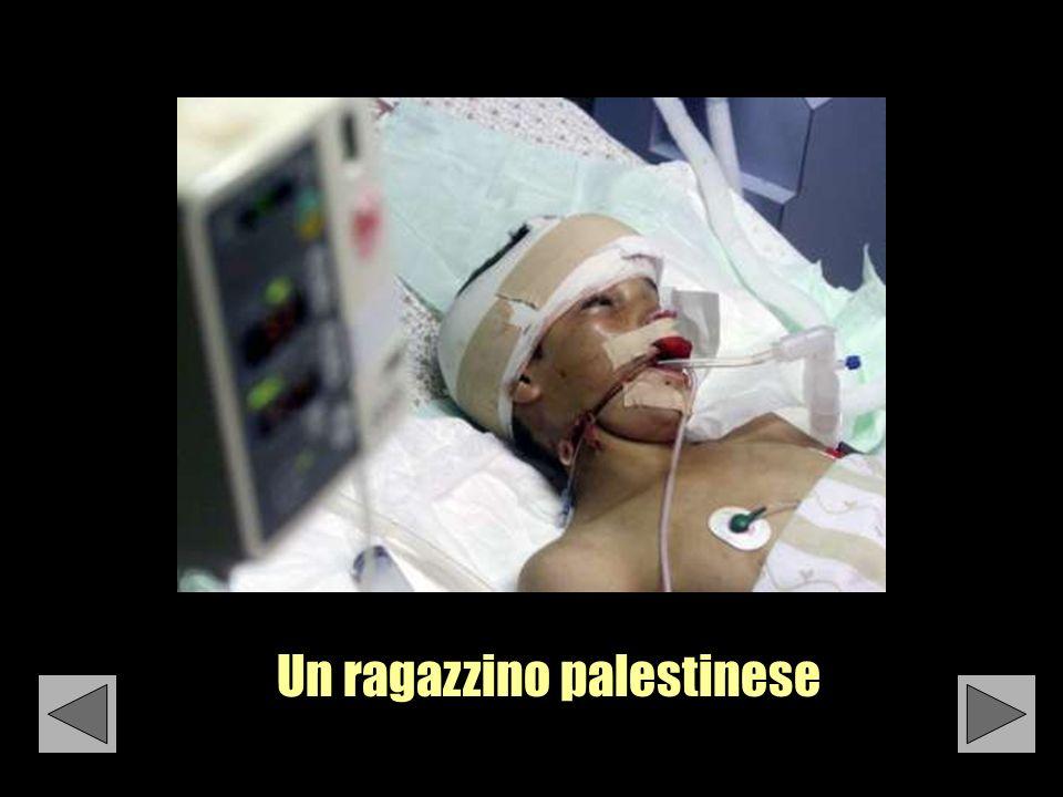 Un ragazzino palestinese