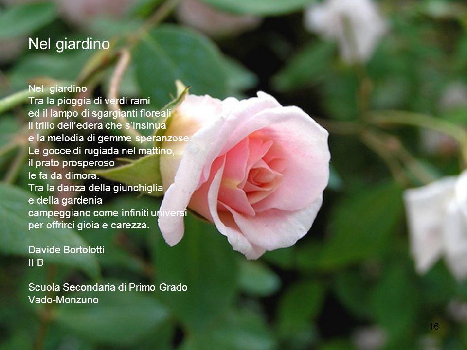 16 Nel giardino Tra la pioggia di verdi rami ed il lampo di sgargianti floreali il trillo delledera che sinsinua e la melodia di gemme speranzose. Le
