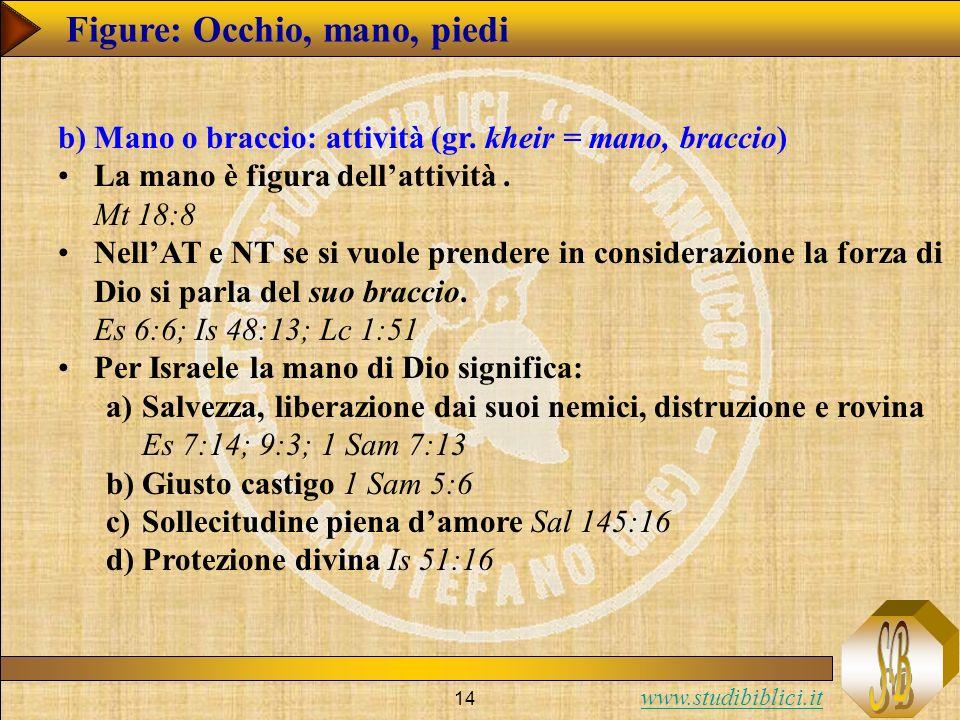 www.studibiblici.it 14 Figure: Occhio, mano, piedi b)Mano o braccio: attività (gr. kheir = mano, braccio) La mano è figura dellattività. Mt 18:8 NellA