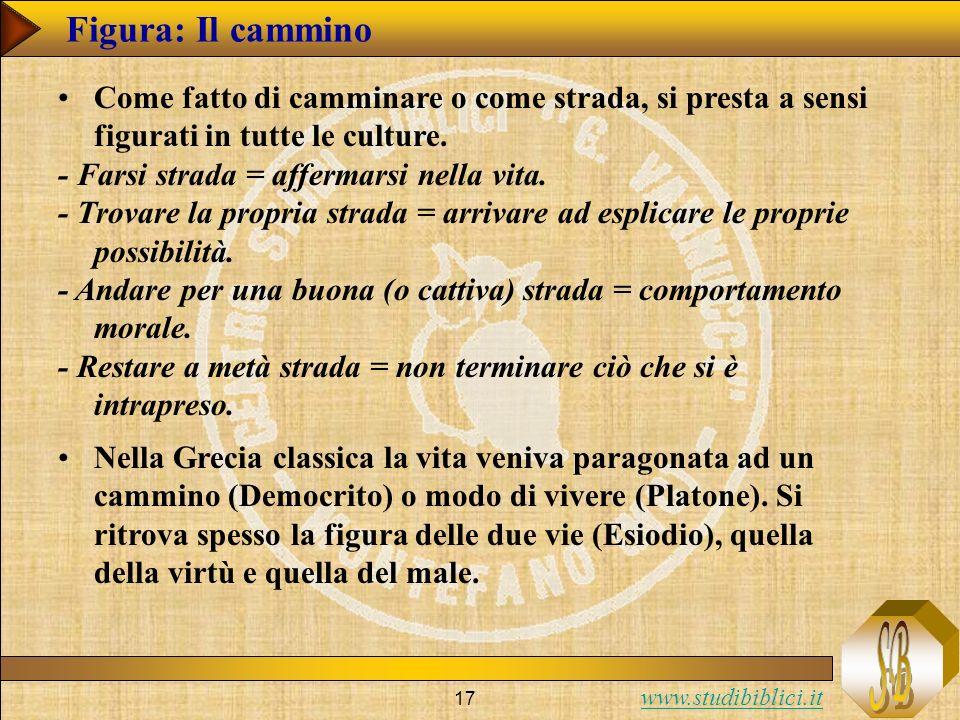 www.studibiblici.it 17 Figura: Il cammino Come fatto di camminare o come strada, si presta a sensi figurati in tutte le culture.