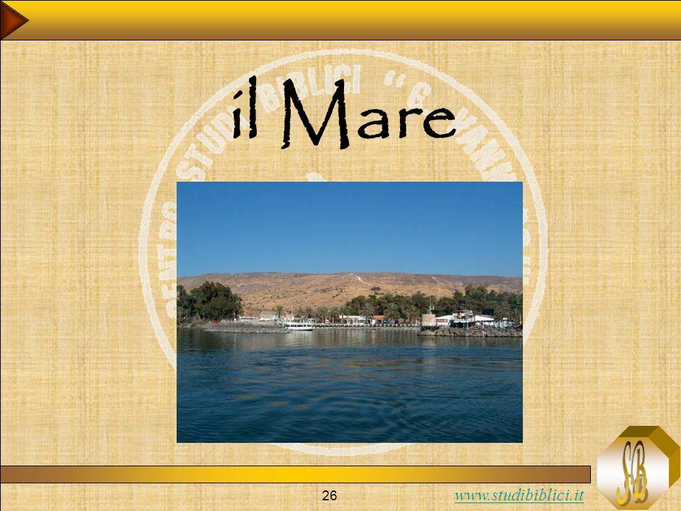www.studibiblici.it 26 il Mare