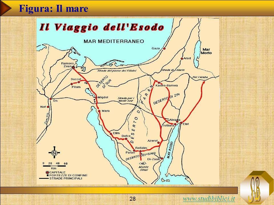www.studibiblici.it 28 Figura: Il mare