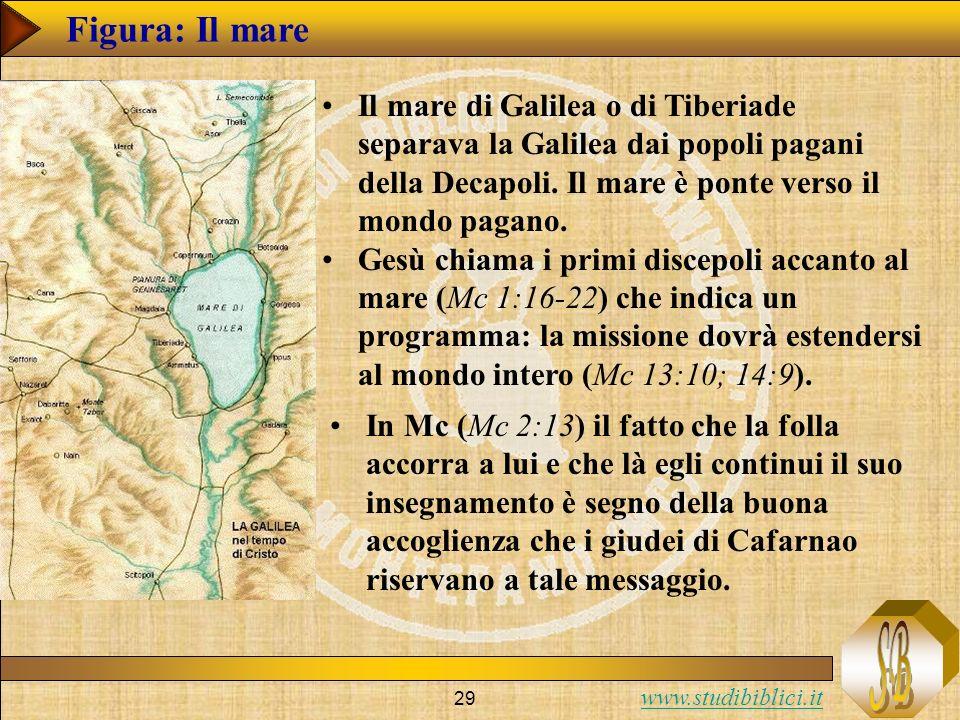 www.studibiblici.it 29 Figura: Il mare Il mare di Galilea o di Tiberiade separava la Galilea dai popoli pagani della Decapoli. Il mare è ponte verso i