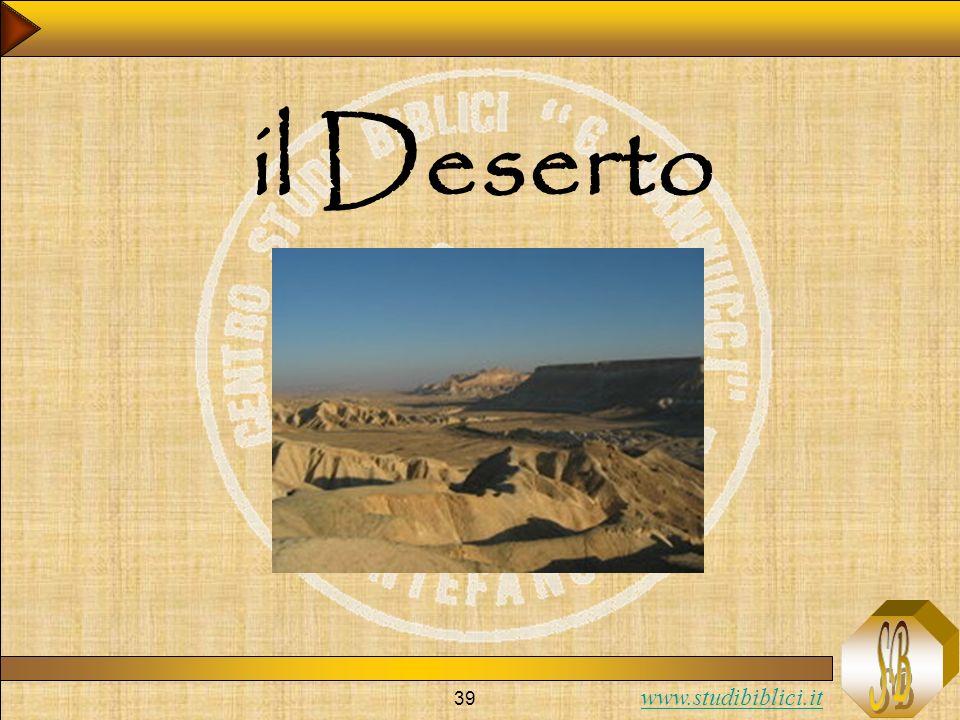 www.studibiblici.it 39 il Deserto